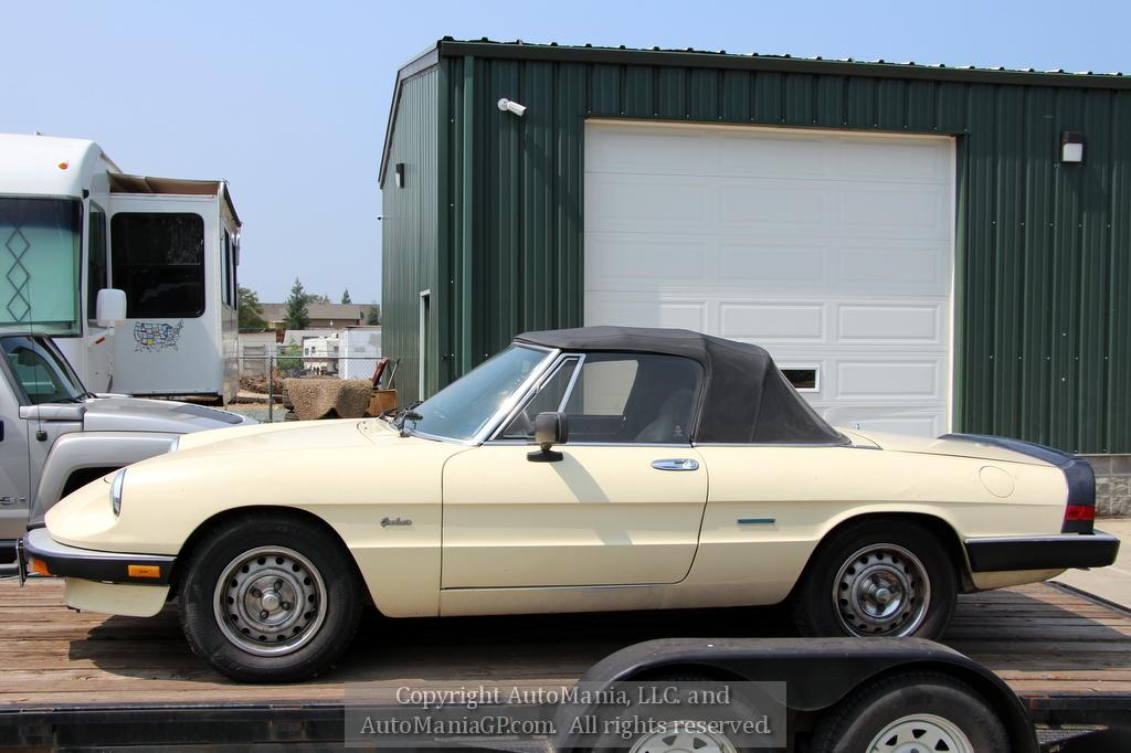 1987 Alfa Romero Graduate for sale